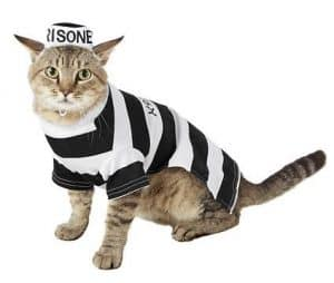 prisoner costume