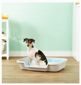 Puppy Pan Cat And Small Animal Litter Pan