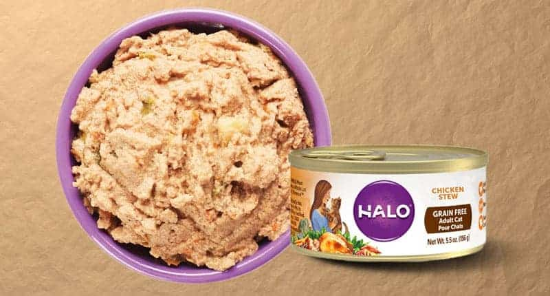 halo-cat-food-review
