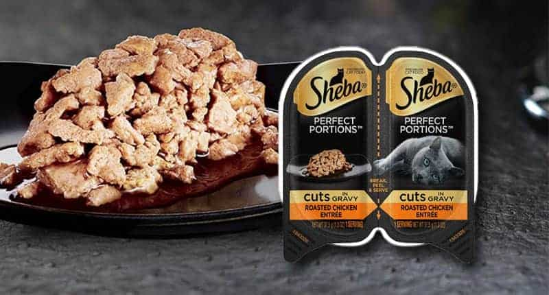 sheba-cat-food-review