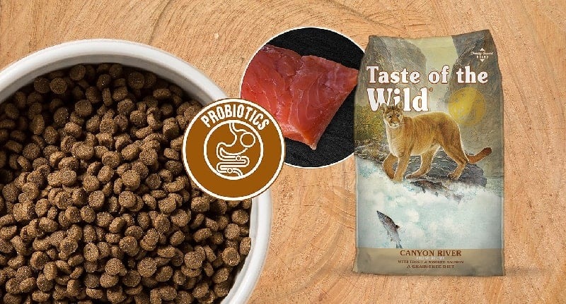 taste-of-the-wild-cat-food-review1