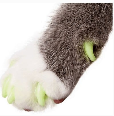 Purrdy Paws Soft Nail Caps for Cat Claws