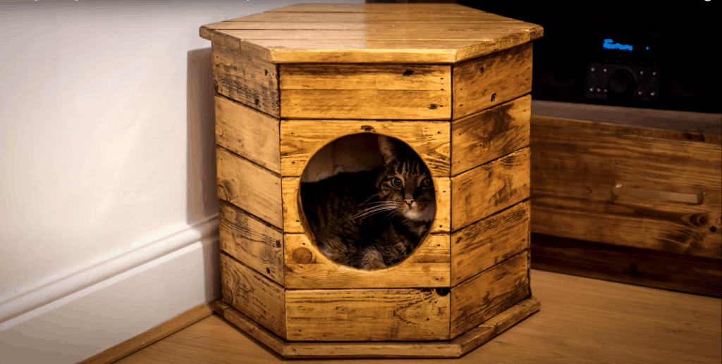 how to build a DIY cat house